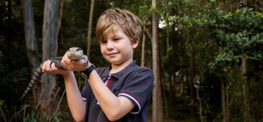 Reptile Encounter Blackbutt Reserve Newcastle