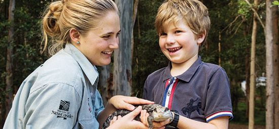 Blackbutt overwhelmed by community response to reptile theft