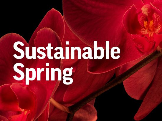 Sustainable Spring Exhibition: Gardens in Bloom